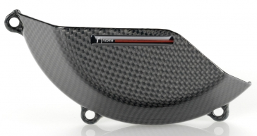 KAWASAKI Z800 RIZOMA ENGINE GUARD CARBON